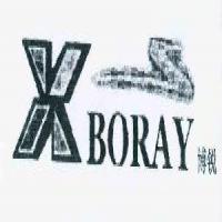博銳 BORAY XS
