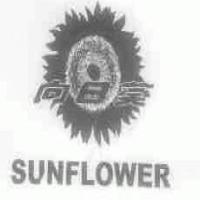 向日葵;SUNFLOWER