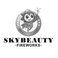 SKYBEAUTY FIREWORKS