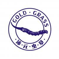 ·沛·元·蟲·草· GOLD·GRASS